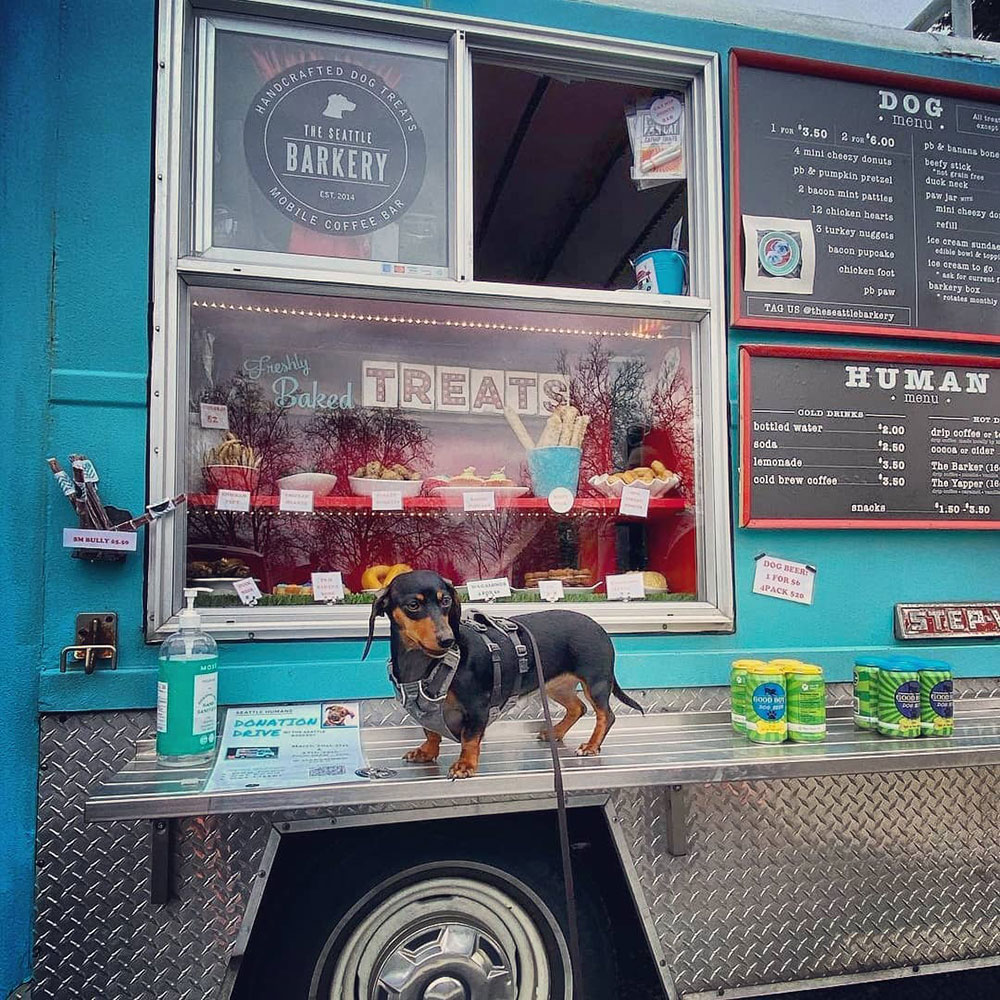 seattle-dog-food-truck