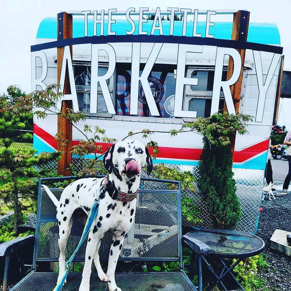 barkery-treat-trailer1