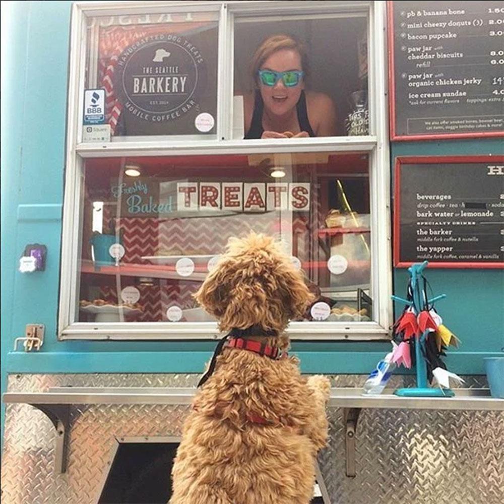 barkery-treat-truck3